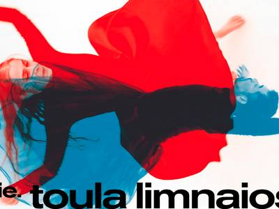 cie. toula limnaios: shifted realities - ein doppel-solo