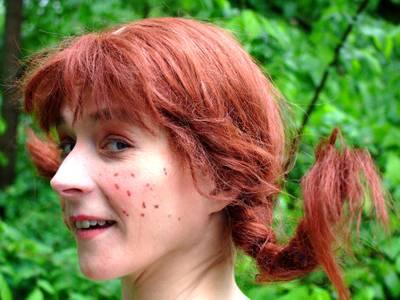 Pippi Langstrumpf (Anett Buchinsiki) – Pippi Langstrumpf (Anett Buchinsiki)