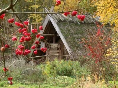 Herbstidylle in Düppel
