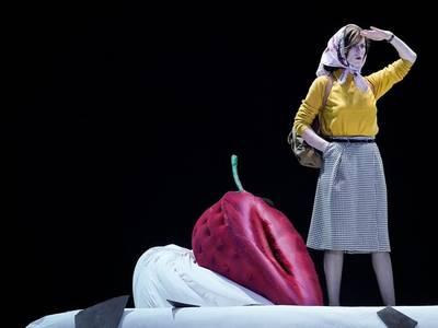 Sophie Rois fährt gegen die Wand im Deutschen Theater – Arno Declair
